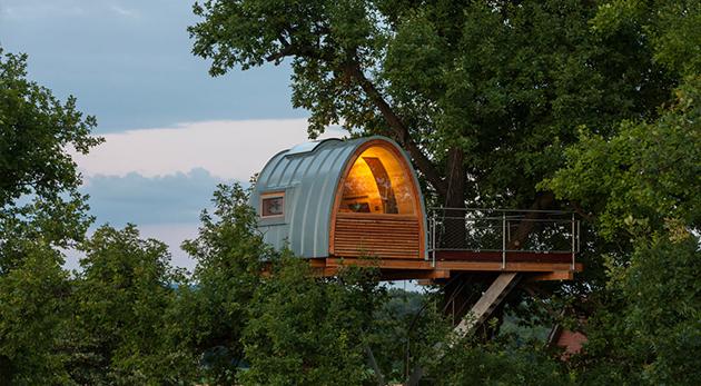 architecture arbre cabane