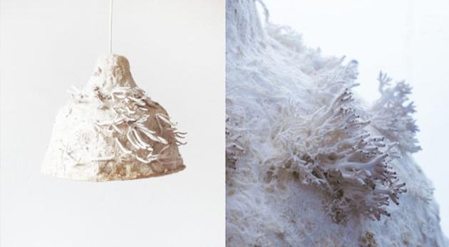 lampe végétale Myx