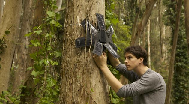 rainforest Connection