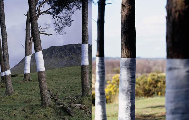 Olsen Zander - Untitled - Land Art