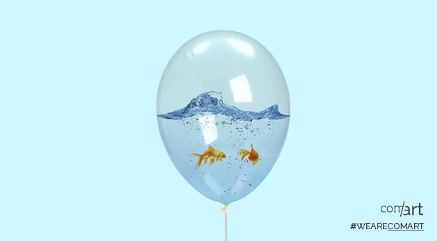 ballon intérieur poisson - comart-design